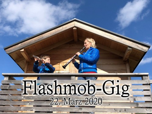 BMK Falshmob-Gig Vol. 2